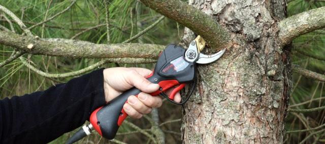 Other Electronic Secateurs/ Power Pruners