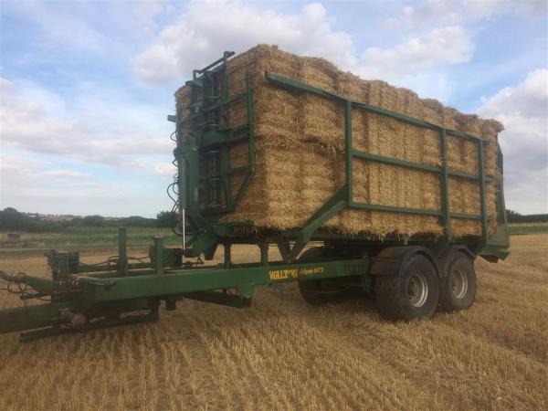 Walton 6072 Bale Chaser For Sale